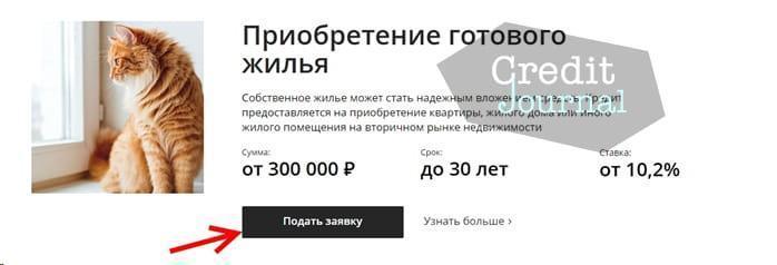 Как заполнить заявку на получение ипотеки