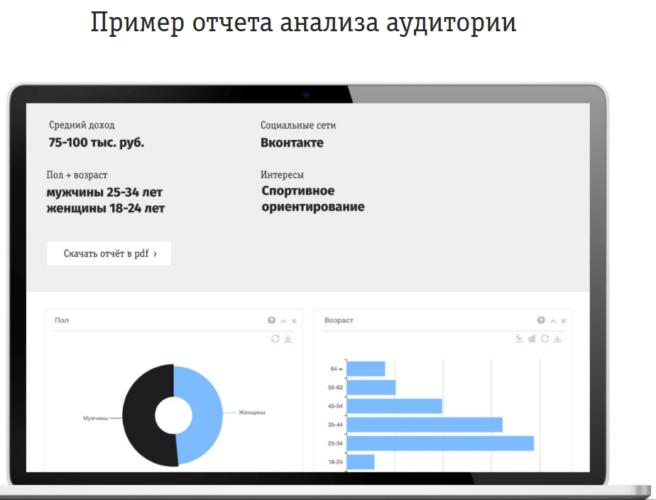 «Анализ аудитории»