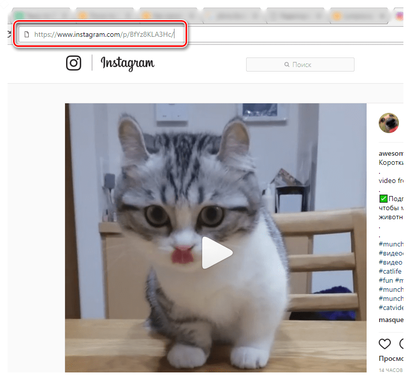 C:\Users\Геральд из Ривии\Desktop\Kopirovanie-ssyilki-na-video-s-sayta-servisa-Instagram.png