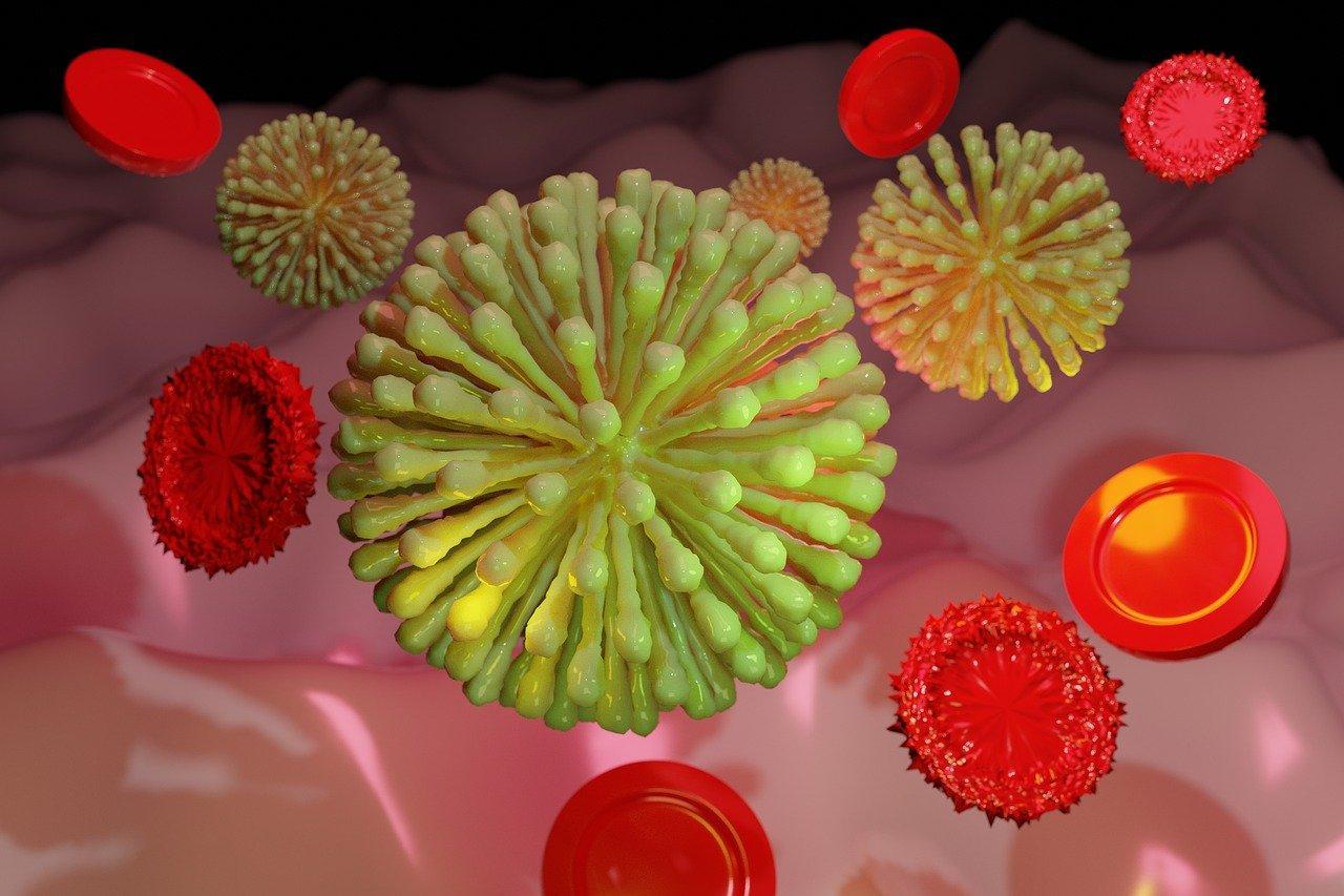 Какие мультики показать детям в пандемию — 7 полезных мультфильмов про бактерии и клетки
