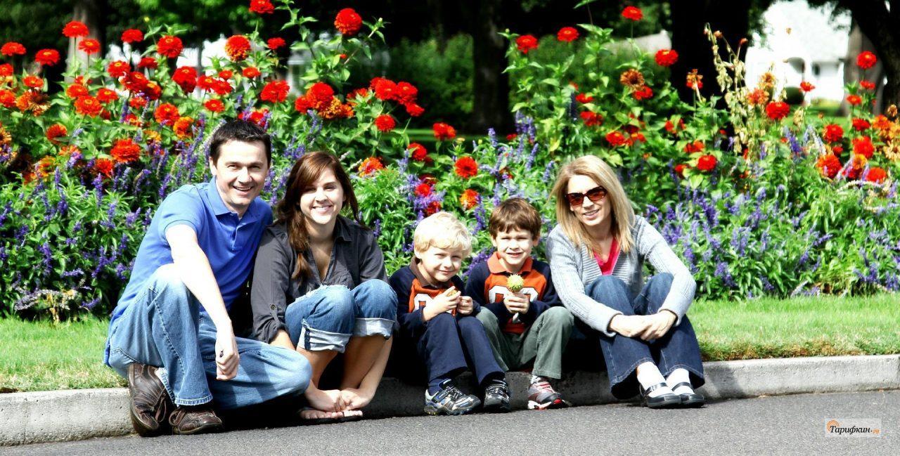 Тариф «Семья» Билайн — подробное описание