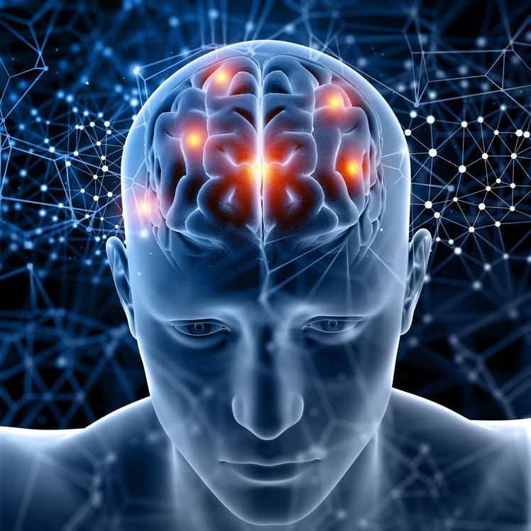 https://factum-info.net/images/4_EksperimentUm/3_development/52_2_brain-training-3.jpg