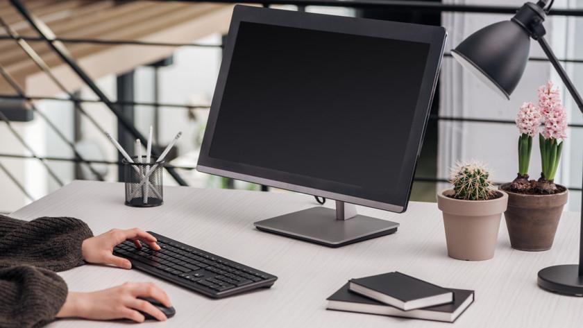 Надо ли ставить кактус возле компьютера
