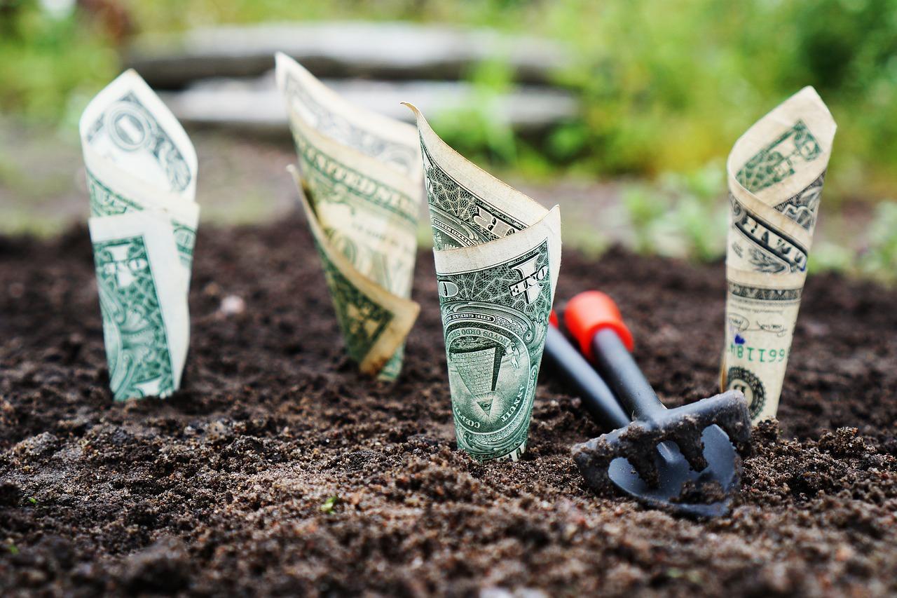 Сбербанк и Виза запустили акцию – как получить от 3000 до 1 млн рублей