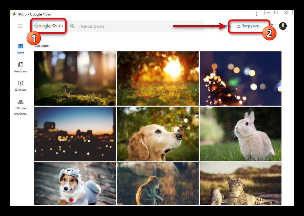 Открытие меню Загрузить на веб-сайте Google Фото